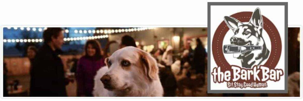 Bars Denver Highlands | Dog Parks Denver | Dog Friendly